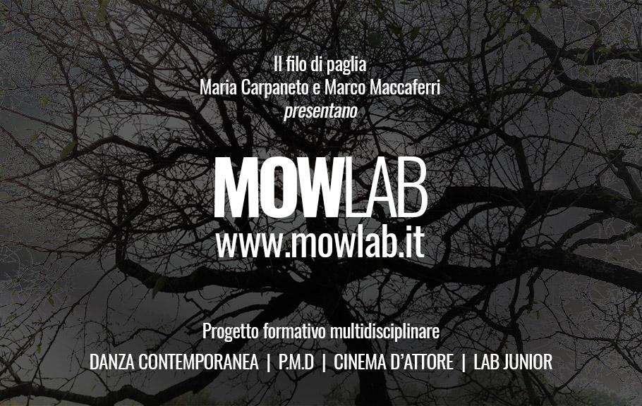MOWlab invito